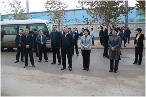 Song Junji, deputy secretary of the Liaocheng Municipal Committee and mayor, led the city's new and old energy conversion project.